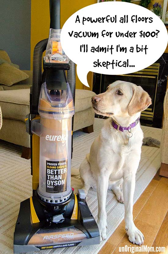 A powerful AND affordable all floors vacuum for less than $100!  #EurekaPower #Cbias #shop