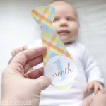 DIY Monthly Baby Stickers