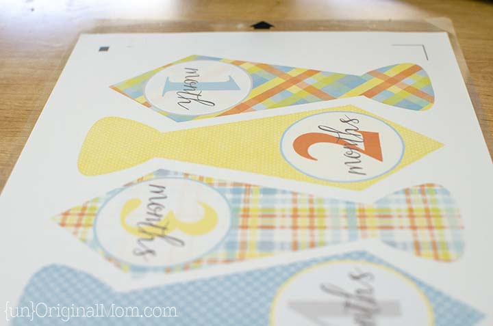 DIY Monthly Baby Stickers - create your own stickers in any shape, size, or color using a Silhouette Cameo or Portrait