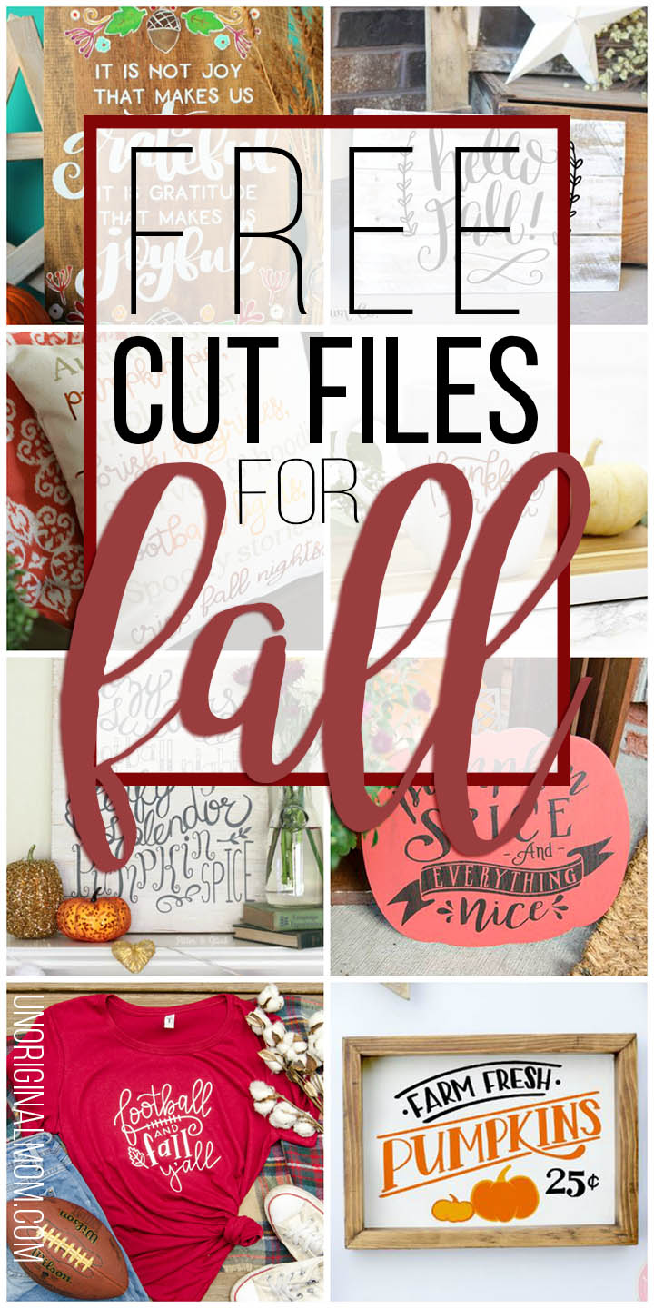 A great list of cute free cut files for fall! Perfect for fall crafting with your Silhouette or Cricut. #freecutfiles